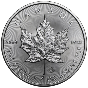 25 PIÈCES MAPLE LEAF 1 ONCE AG